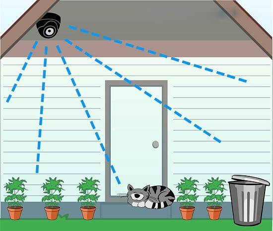 Chọn góc quan sát của Camera IP Wifi