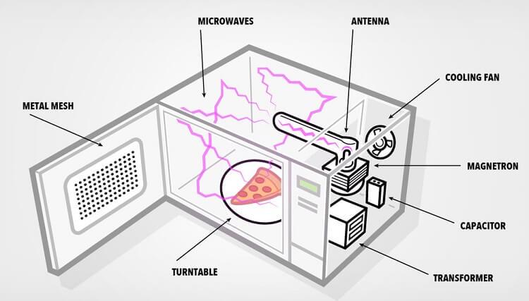 Sóng điện từ làm các phân tử nước chuyển động mạnh khiến thực phẩm nóng lên nhanh chóng
